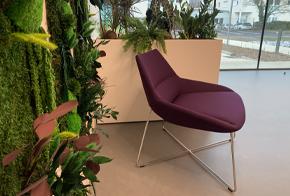 HOLI.E Concept - Aménagement espace de travail - Chois des finitions espace d'accueil végétal gros fauteuil